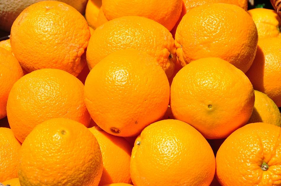 Naranjas valencianas para exportar. España, Spain