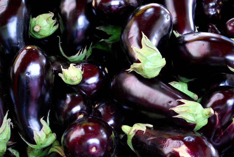 Berenjenas de España para exportar. Aubergine from Spain to export