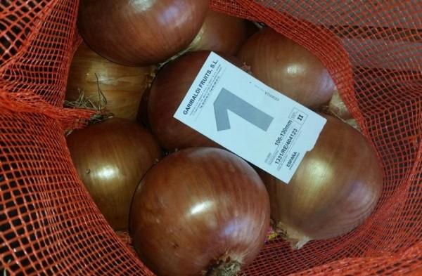 Calibre cebollas 1 de 115 mm o más